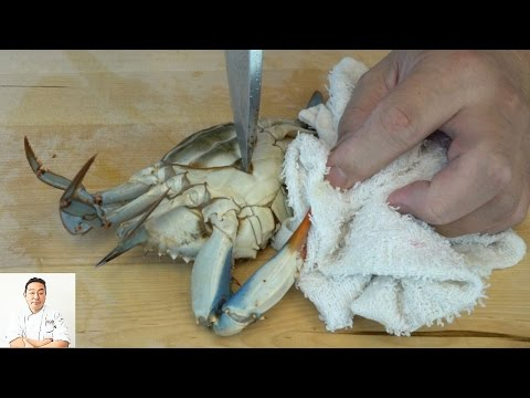 Thumbnail: EXTREMELY GRAPHIC: Live Kill and Twice Cooked Blue Crabs