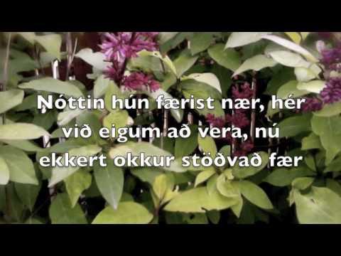 Lífið er Yndislegt TEXTI/LYRICS