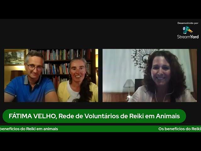 Benefícios do Reiki em animais - DESMISTIFICA