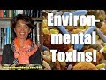 Stephanie McCarter MD - How Environmental Toxins Are Affecting Your Health & What To Do About It!