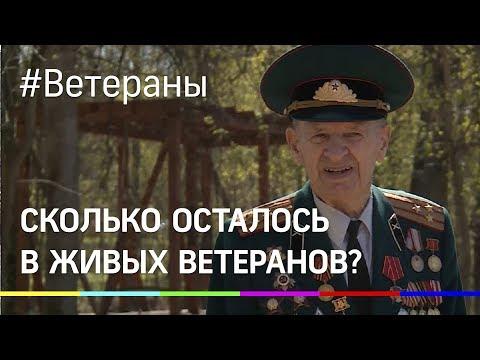 Сколько осталось в живых ветеранов Великой Отечественной?