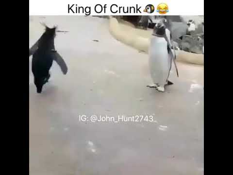 John Hunt2743 King of Crunk