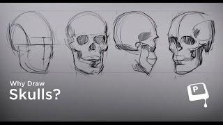 6-7) Почему полезно рисовать черепа (Why Draw Skulls) (CtrlPaint.com)(Группа в ВК: https://vk.com/jpeguroki Канал на YouTube: https://www.youtube.com/channel/UCtWGKsPL7Q5PwMm1ZV2bA2A --- Бесплатные кисти и ..., 2016-09-06T04:08:00.000Z)