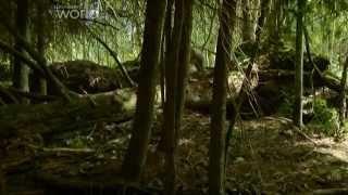 NEXT24.PL: Czarnobyl - Życie w strefie śmierci