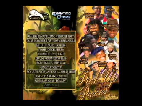 PICK UP THE PIECES RIDDIM (NEW BRAND MUSIC) 2014 - Mix Slyck