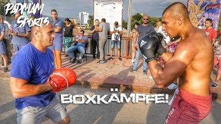 """Boxer """"prügeln"""" sich auf der Straße 👊 Meine Art des kämpfens"""