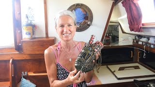 CATCH AND COOK - Seafood Bonanza at Great Keppel Island! (Sailing SV Sarean) Ep. 65