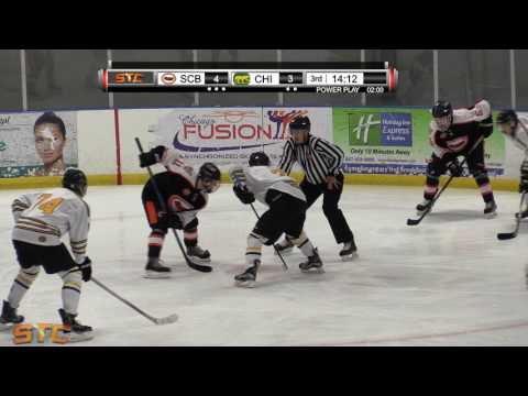 Chicago Cougars vs Steele County Blades 1-29-17 3rd Period