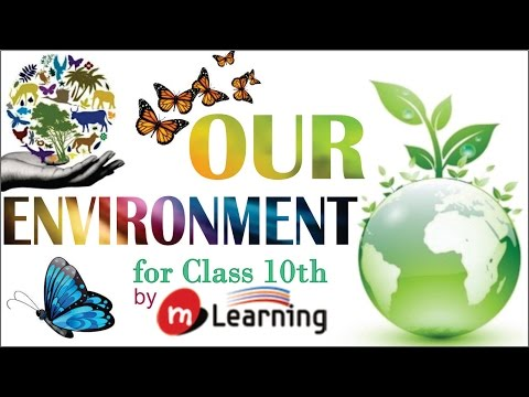 Our Environment: Natural & Artificial Environment - 01 For Class 10th and NTSE