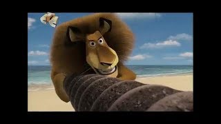 "Download Video ""Мадагаскар"". Анонс на СТС MP3 3GP MP4"