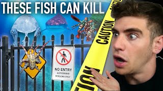 Enter the DEADLIEST Aquarium in the World... (most venomous fish) ☠️