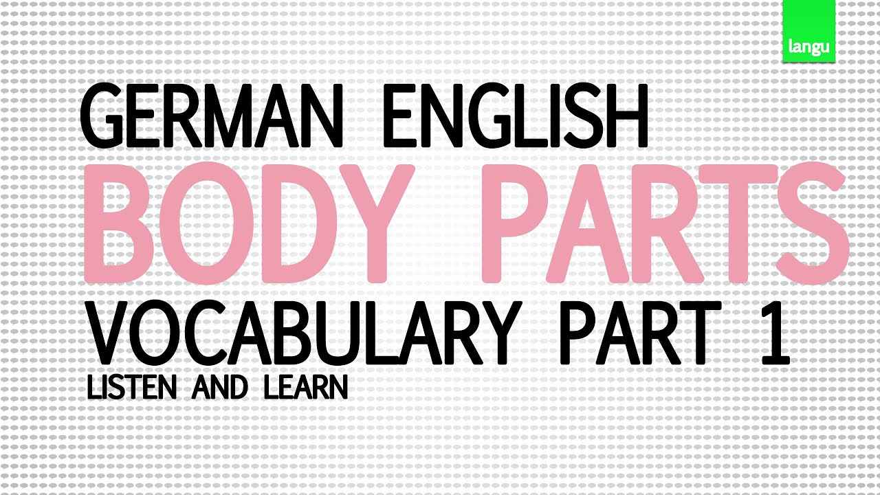 Learn german english lesson 1 improve your english basic words learn german english lesson 1 improve your english basic words body parts part 1 kristyandbryce Images