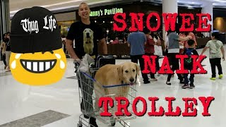 SNOWEE  AND SNOWA AT LIPPO MALL PURI | SNOWEE THE GOLDEN