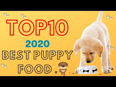 Best Dog Food For Puppy In 2020 | Top 10 Best Puppy Food.
