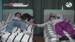 [JustBeJoyful JBJ] Great Chemistry! Roommates 'Cat Butlers&Oldest-Youngest&95s' Ep.1