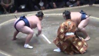 20160114大相撲初場所5日目 勢 vs 鶴竜 横綱に土.