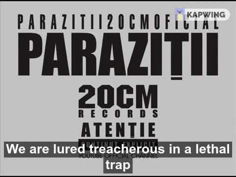 Parazitii goana dupa iluzii. Goana dupa iluzii - Forumul Softpedia