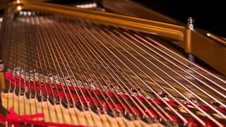 Roland Digital Piano — String Resonance