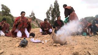 Bolivia: Potatoes in peril