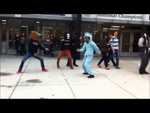 Harlem Shake (Francis Lewis High School) v10018239012
