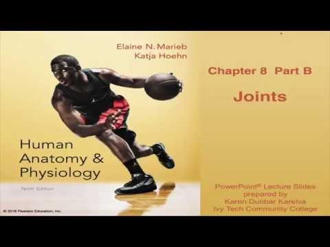 Anatomy & Physiology Chapter 8 Lecture Part B : Joints