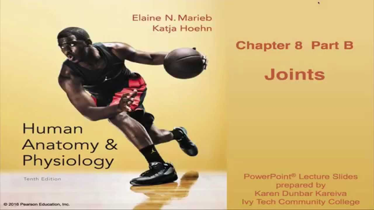 Anatomy & Physiology Chapter 8 Lecture Part B : Joints - YouTube