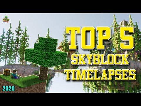 ✔ Minecraft: Top 5 Skyblock Timelapses!