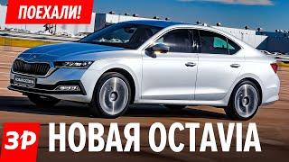 Шкода Октавия А8 российской сборки: брать или нет? / Skoda Octavia 2020 - почти Audi! Первый тест
