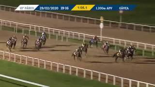 Vidéo de la course PMU PREMIO SERNAGLIO (INTERNET)