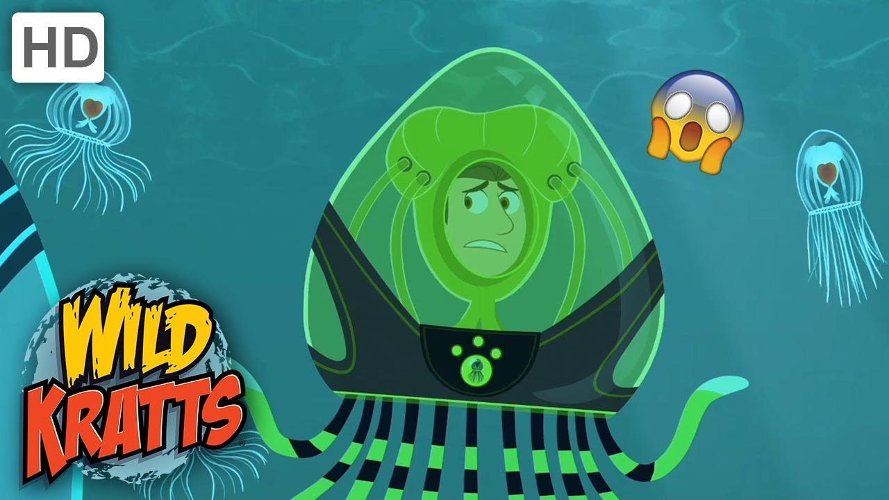 WILD KRATTS | Are They ALIENS? | Amazing Creatures