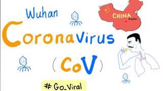 Novel Coronavirus 2019 Ncov 🦠 Outbreak 😷 Update # 1 Covid-19