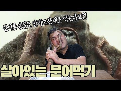 문어를 생으로 한번 먹어볼까? 살아있는 생문어 먹기 도전! Eatingshow Mukbang