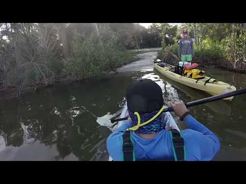 Mosquito Lagoon Camping- Chasing Tails #4