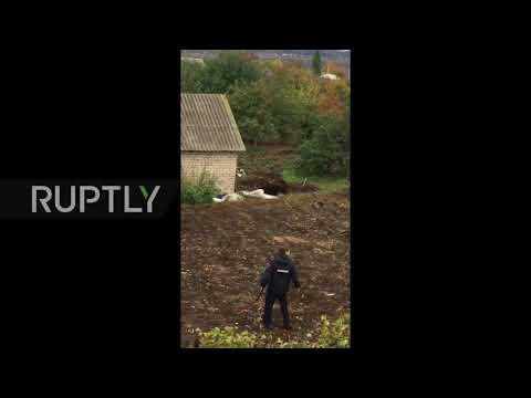 Russia: Police guns down escaped bear that killed Semiluki resident