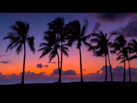 Theme from a Summer Place  by Hugo Montenegro { instrumental }
