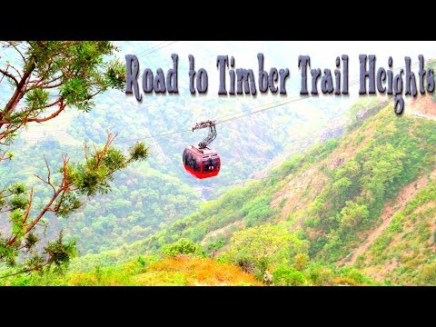 The Undiscovered Roads || Road to Timber Trail Heights || Himachal Pradesh