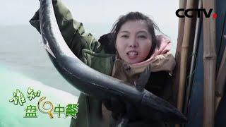 《谁知盘中餐》 20200617 莱阳鲅鱼 招招为锁鲜 CCTV农业