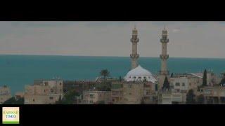 Palestinian Journalist visits Ahmadiyya Muslim Community Kababir Haifa