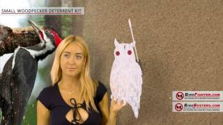 Woodpecker Deterrent kit video Learn how to install woodpecker Devices