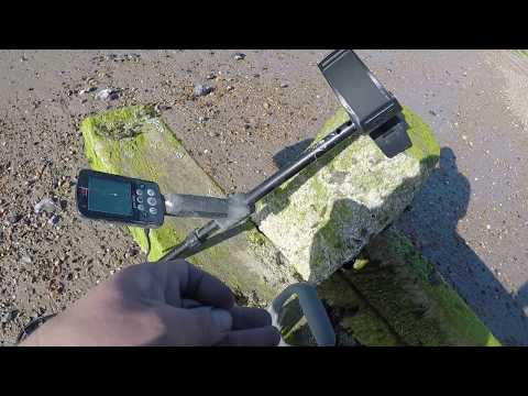 Two Hours...... Two Minelab Equinox 600's Short low tide hunt