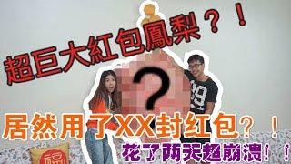 【挑战】挑战用红包制作巨大凤梨!过程超崩溃?!