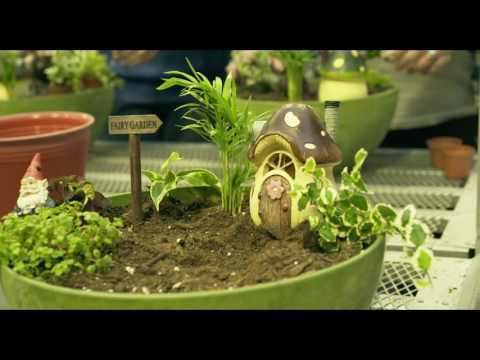 Starkie Bros Spring Fairy Garden Workshop   Duration: 94 Seconds.