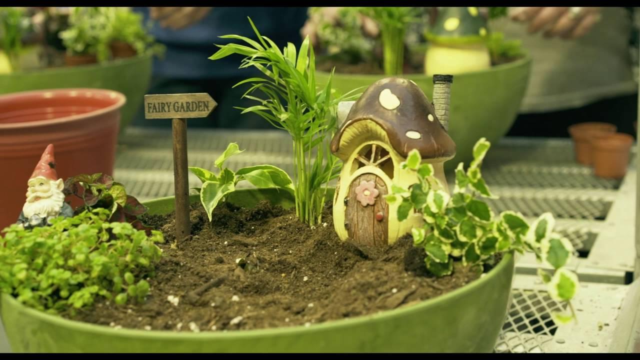 Elegant Starkie Bros Spring Fairy Garden Workshop