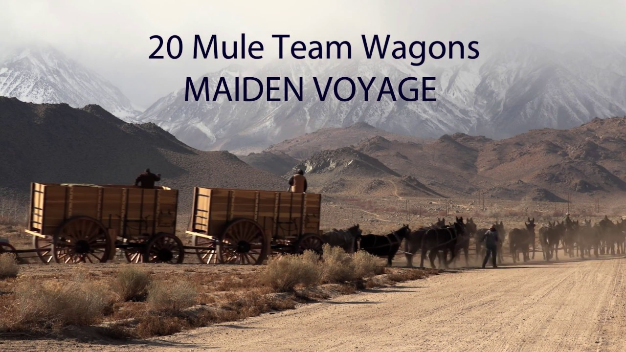 Maiden voyage for the borax wagon replicas 15 sec youtube for 20 mule team borax swimming pools