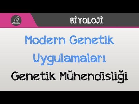 Modern Genetik Uygulamaları - Genetik Mühendisliği