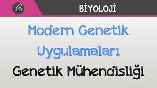 Modern Genetik Uygulamaları Genetik Mühendisliği