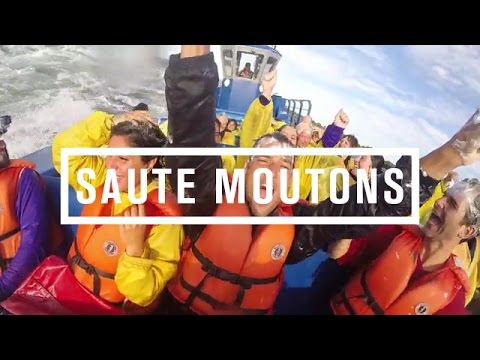 Saute Moutons - JET BOATING Montreal