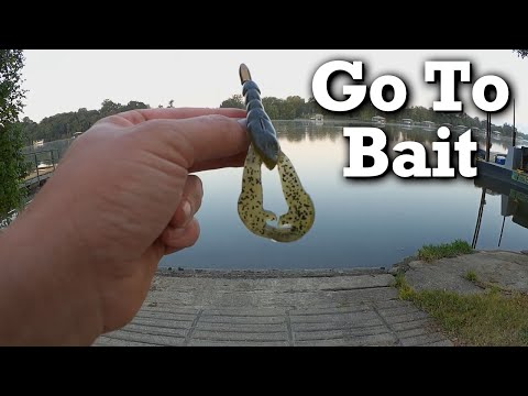 My Go To Bait For Bass Fishing, The Texas Rig Craw - What Is Yours?