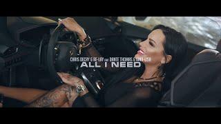 All I need - Chris Decay & Gina Lina & Re Lay feat. Dante Thomas
