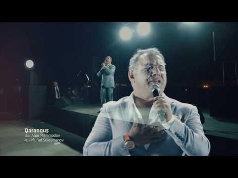 Ədalət Şükürov - Qaranquş (Solo konsert)
